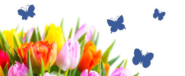 bunter Blumenstrauß mit dunkelblauen Schmetterlingen im Hintergrund