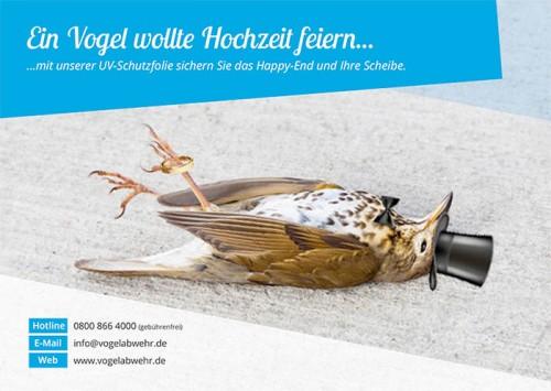 Firmenprofil von: Ihr Spezialist für Vogelabwehr